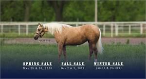 Shawnee Horse Sales LLC