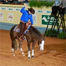 Baruch Reining Horses