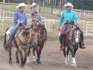 Patten Rope Horses
