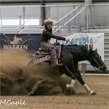 ASH Performance Horses
